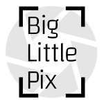 Big Little Pix logo 1